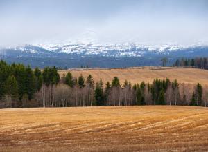 Норвегия обещает вернуть деньги туристам, если не будет снега