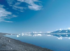 На Гренландию обрушилось землетрясение и цунами