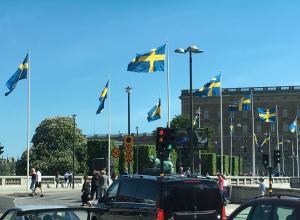 «Национальный день» в Швеции