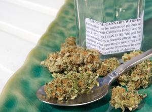 Ученые: марихуана останавливает процесс старения мозга