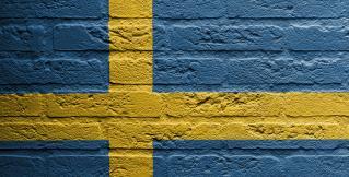 Беженцы? Мусульмане? Угрозы терактов? Швеция добавляет 500 млн. крон в бюджет обороны