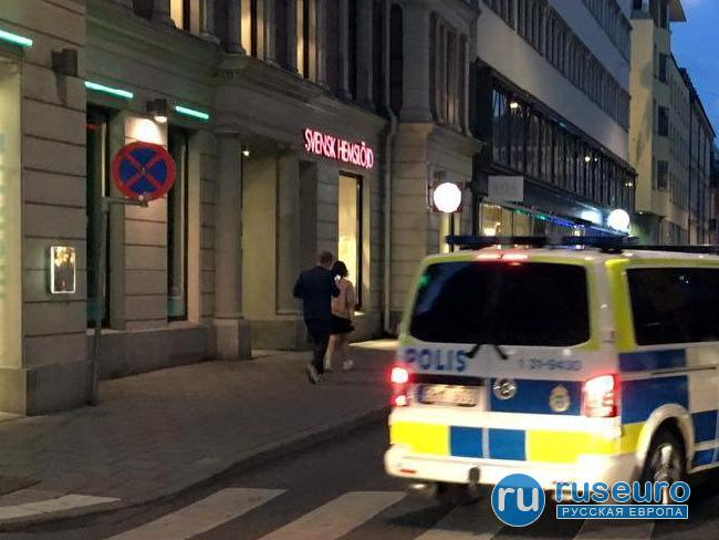 Шведский детектив о мигрантах: «Это совершенно другая порода людей»