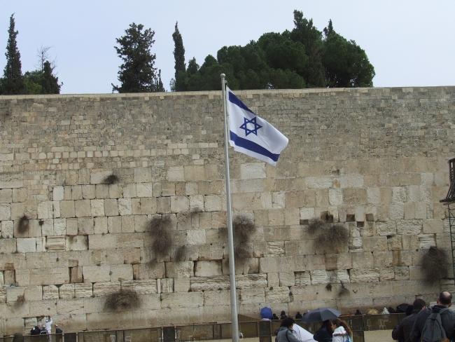 Опрос накануне визита в Израиль президента ФРГ: 40% немцев не любят евреев
