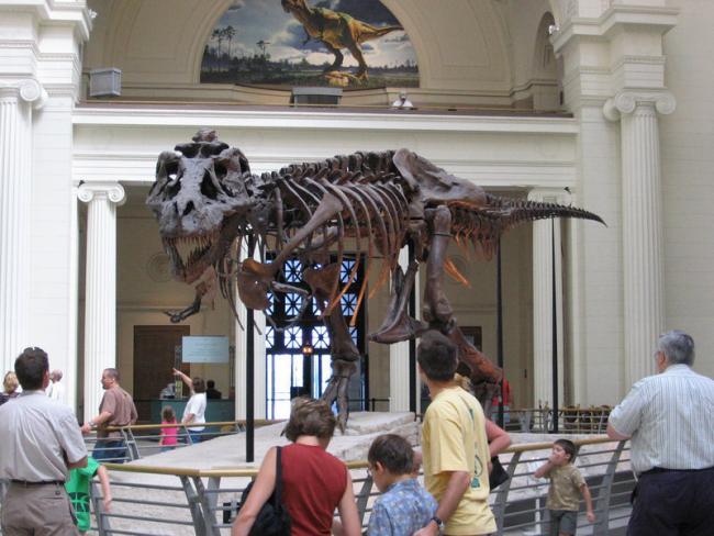 В Австралии обнаружен «Парк Юрского периода» со следами самого большого динозавра
